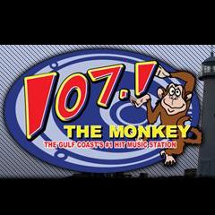 The_Monkey_compressed